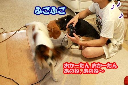 2_20110525220130.jpg