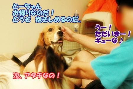 2_20110724000133.jpg
