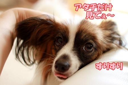 2_20110804220754.jpg