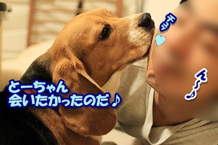 3_20110327000957.jpg