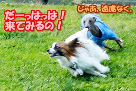 3_20110508221756.jpg