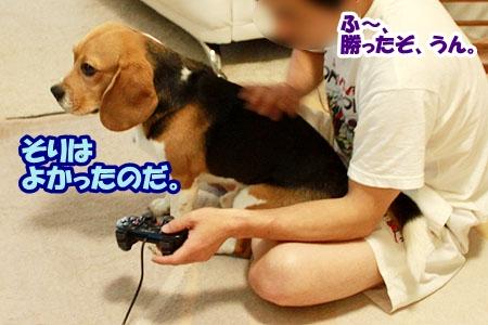 3_20110525220128.jpg
