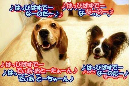 3_20110531201030.jpg