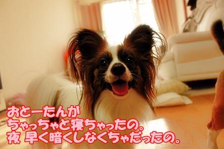 3_20110703234338.jpg