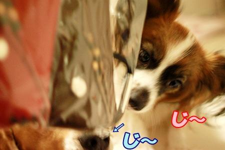 3_20110714012144.jpg