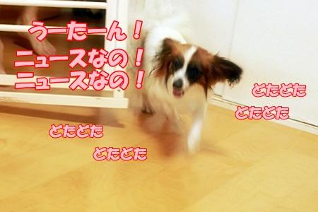 3_20110721232631.jpg