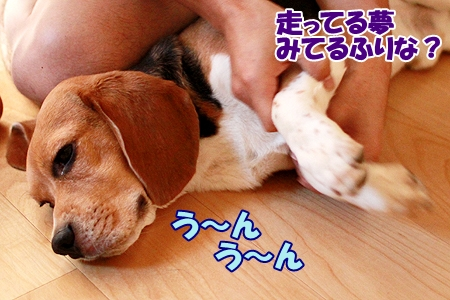 3_20110724235926.jpg