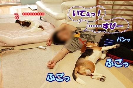 3_20110812111724.jpg