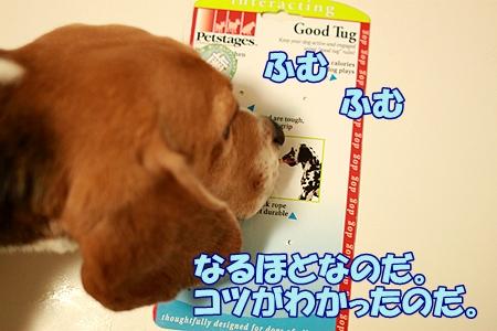 3_20110825003710.jpg