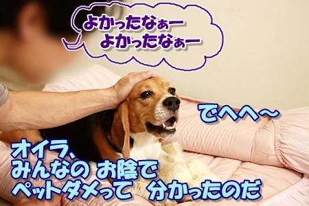 3_20110829000352.jpg