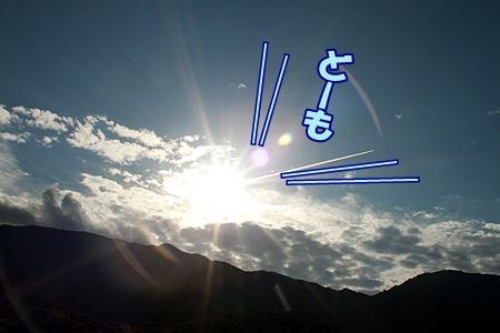 3_20111019111743.jpg