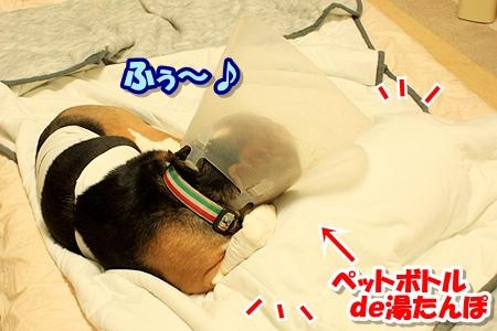 4_20110322234706.jpg