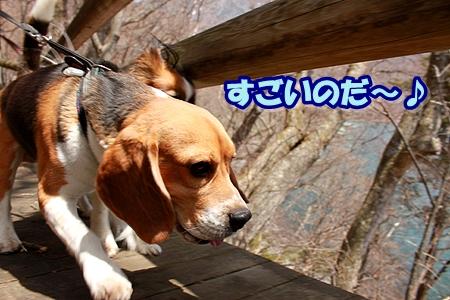 4_20110505200838.jpg