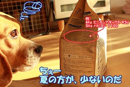 4_20110722221245.jpg