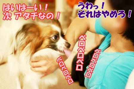 4_20110724000133.jpg