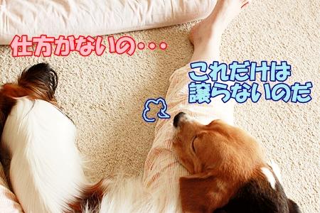 4_20110826221916.jpg