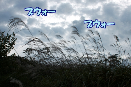 4_20111019111743.jpg