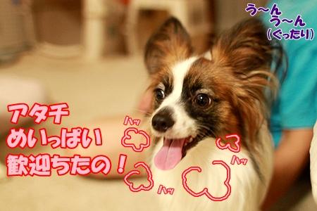 5_20110724000133.jpg