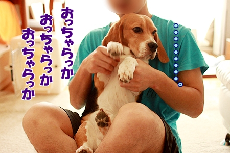 5_20110724235926.jpg