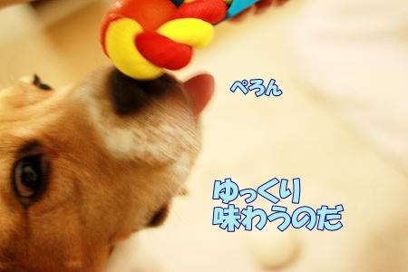 5_20110825222456.jpg