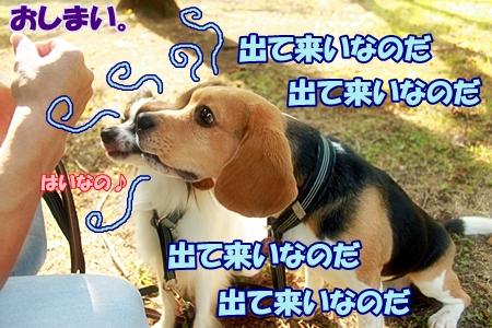 6_20110704150546.jpg