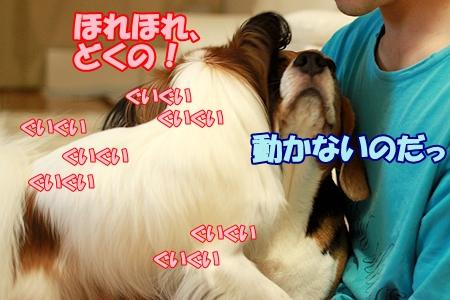 6_20110916223027.jpg