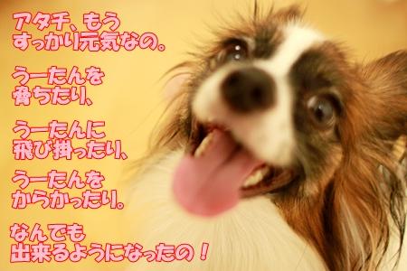 6_20110919010342.jpg