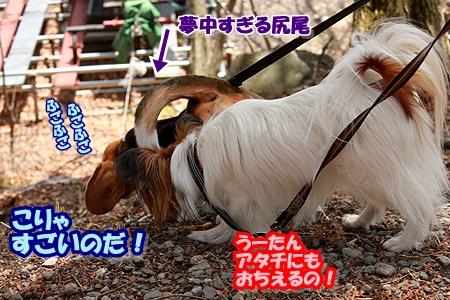 7_20110505200834.jpg
