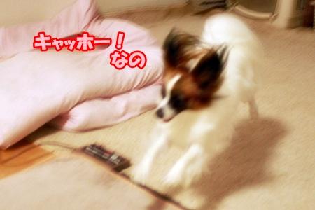 7_20110627104756.jpg