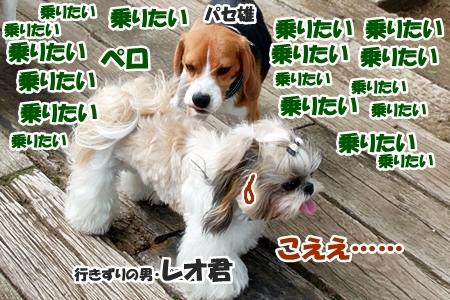 8_20110607232324.jpg