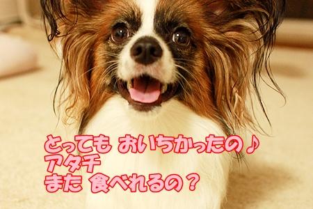 8_20110715223515.jpg