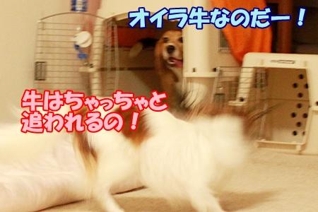 omake_20110817231031.jpg