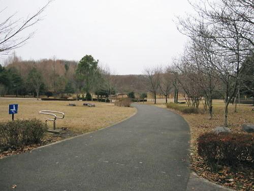 10長岡公園99918