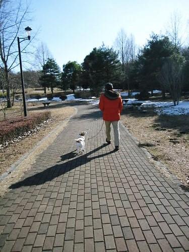 2011長岡公園076