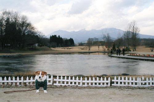 2011おでかけ610