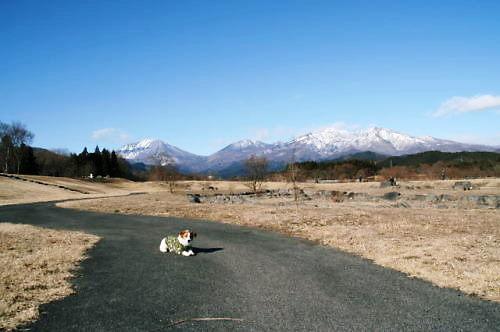 2012おでかけ004