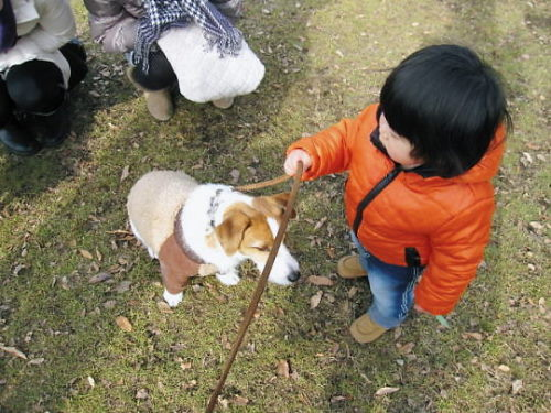 2012長岡公園049