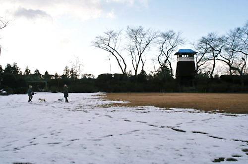 2012おでかけ053