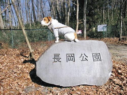2012長岡公園101