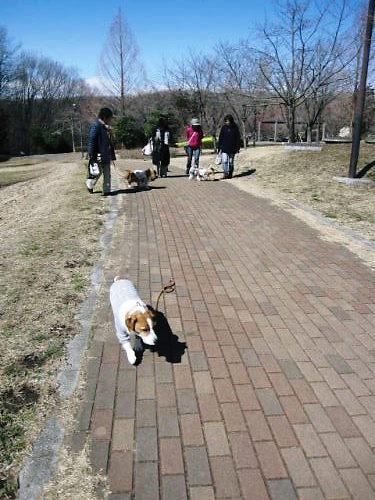 2012長岡公園171