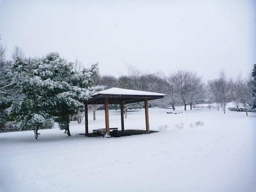 2013長岡公園085