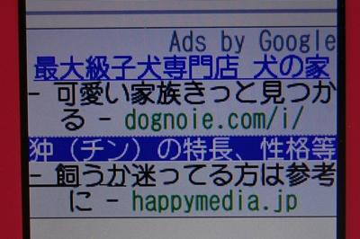 iDSC_6762.jpg