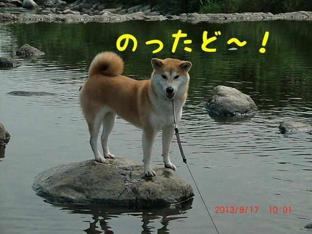 moblog_8e14a243.jpg