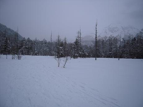 冬の上高地 029