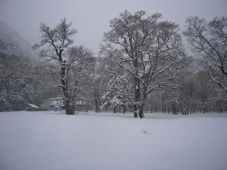 冬の上高地 093