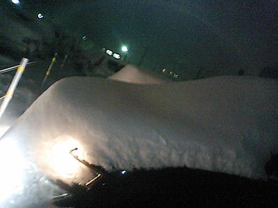 車が凍りついてました(;゚д゚)