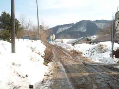 2月下旬の景色