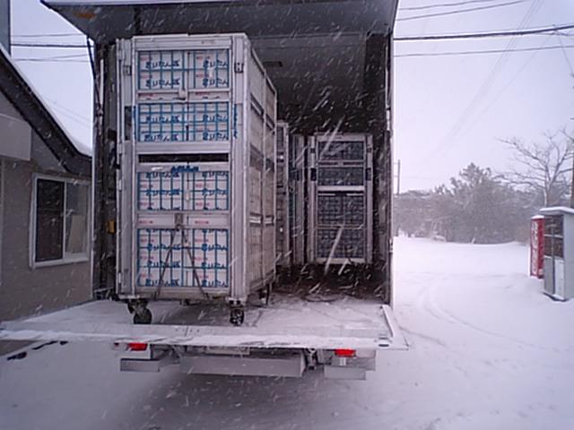 猛吹雪の中の、きりたんぽ鍋出荷作業でした