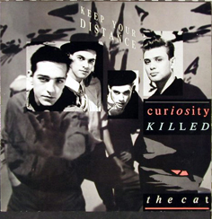 CURIOSITY KILLED THE CAT「KEEP YOUR DISTANCE」