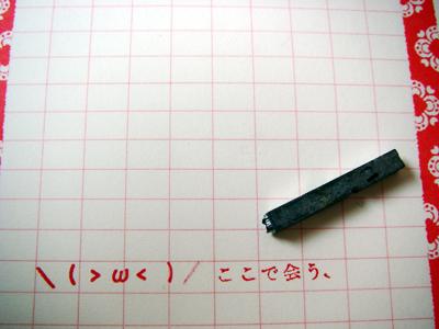 IMGP8395.jpg